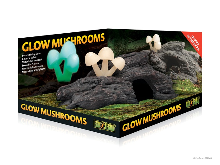 Natural Hide Out Glow Mushrooms