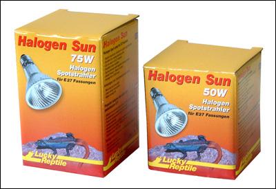 Halogen Sun
