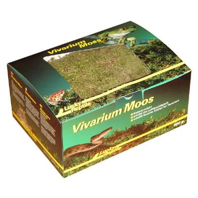 Vivarium Moss 150g