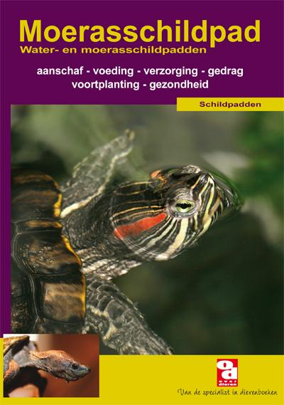 Moerasschildpad (NL)