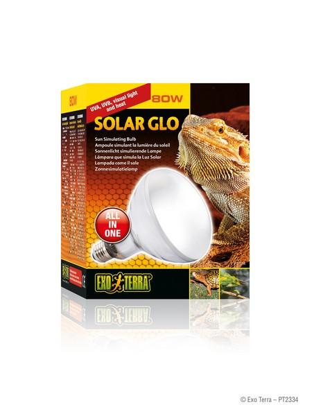 Terra Solar Glo