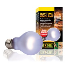 Day Glo Bulb