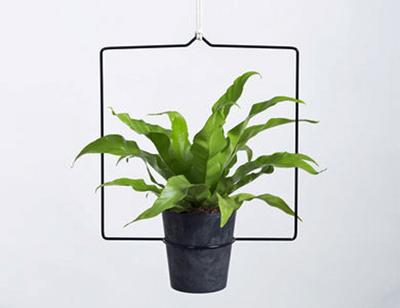 Plantenhanger Quadra