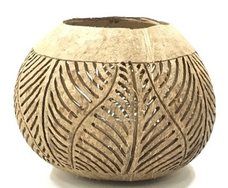 Kokosnoot blad