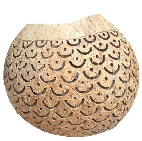 Kokosnoot boog