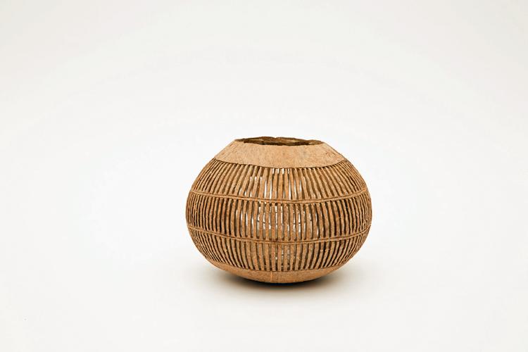 Kokosnoot streep