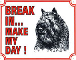 Break in make my day Bouvier