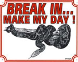 Break in make my day Python