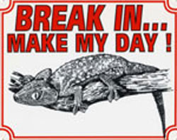 Break in make my day Gekko
