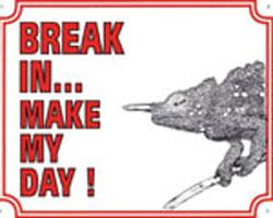 Break in make my day Kameleon
