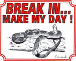 Break in make my day Cornsnake