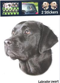 Kop Labrador zwart