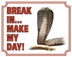 Break in make my day Cobra