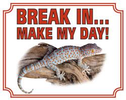 Break in make my day Gekko
