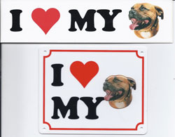 I love my Staffordshire Bull Terrier