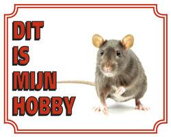 Dit is mijn hobby Rat