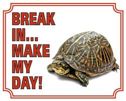 Break in make my day Schildpad