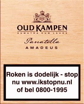 Oud kampen Amadeus