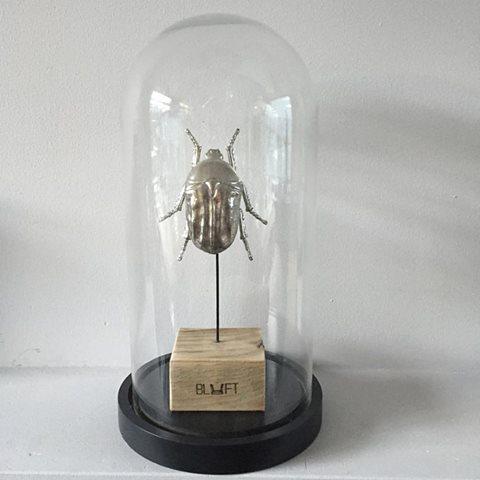 Beetle Chroom