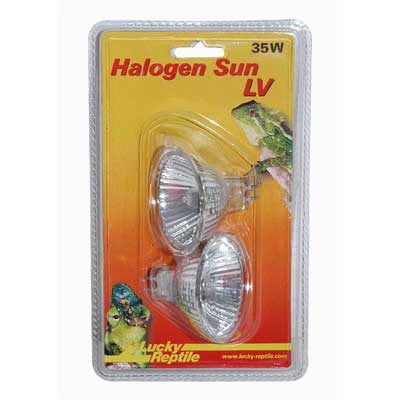 Halogen Sun LV (Double pack)