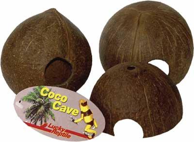 Coco Cave