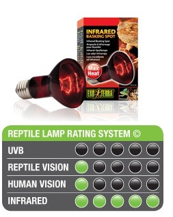 Heat Glo infrared Lamp
