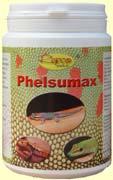 Phelsumax