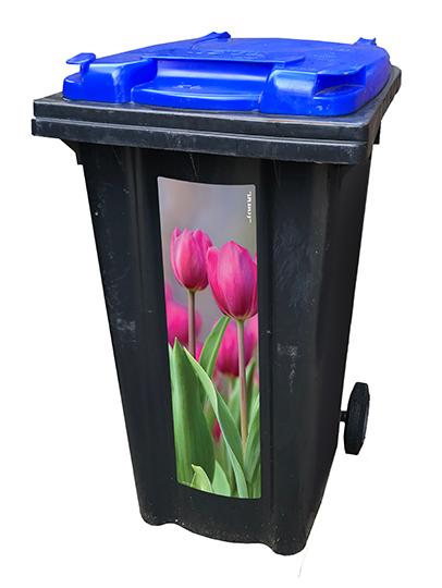 Tulpen strip