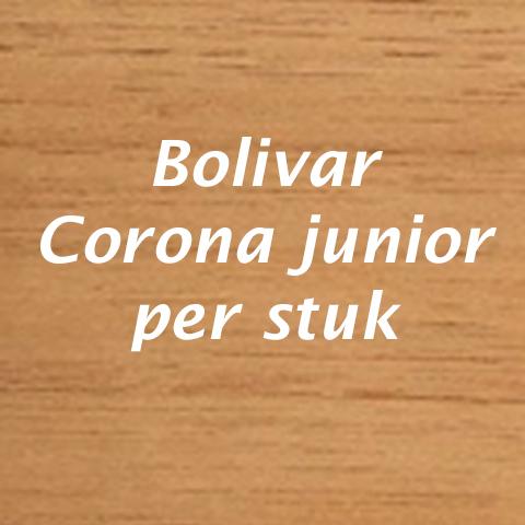 Bolivar Corona Junior