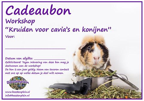 https://myshop-s3.r.worldssl.net/shop5460500.pictures.Cadeaubon_Workshop_Caviakruiden.jpg