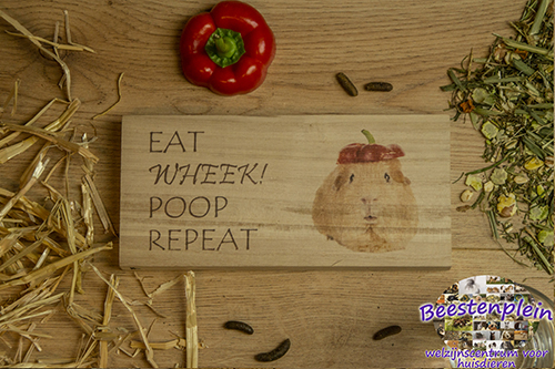 https://myshop-s3.r.worldssl.net/shop5460500.pictures.Houten_bordje_21x10_eatwheekpooprepeat_logo.jpg