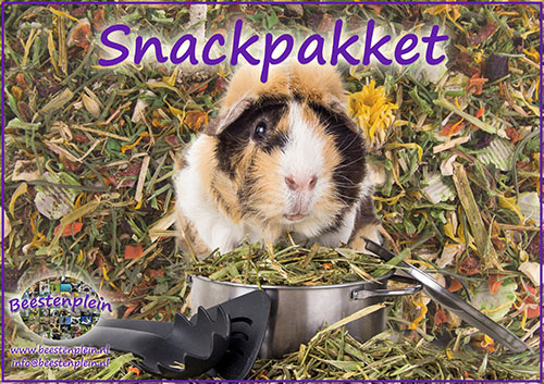 https://myshop-s3.r.worldssl.net/shop5460500.pictures.Label_cavia_snackbox.jpg