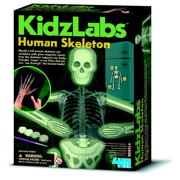 Mensen skelet glow in the dark