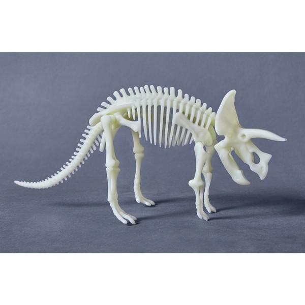 Terra Kids Triceratops